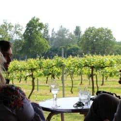 Great British Wine Tours – Wine Tasting Hen Parties In Sussex